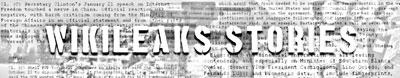 The Wikileaks Stories logo