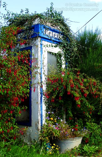 An old phone box covered with flowers